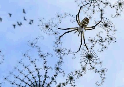 Pókhálóra emlékeztető fraktál
